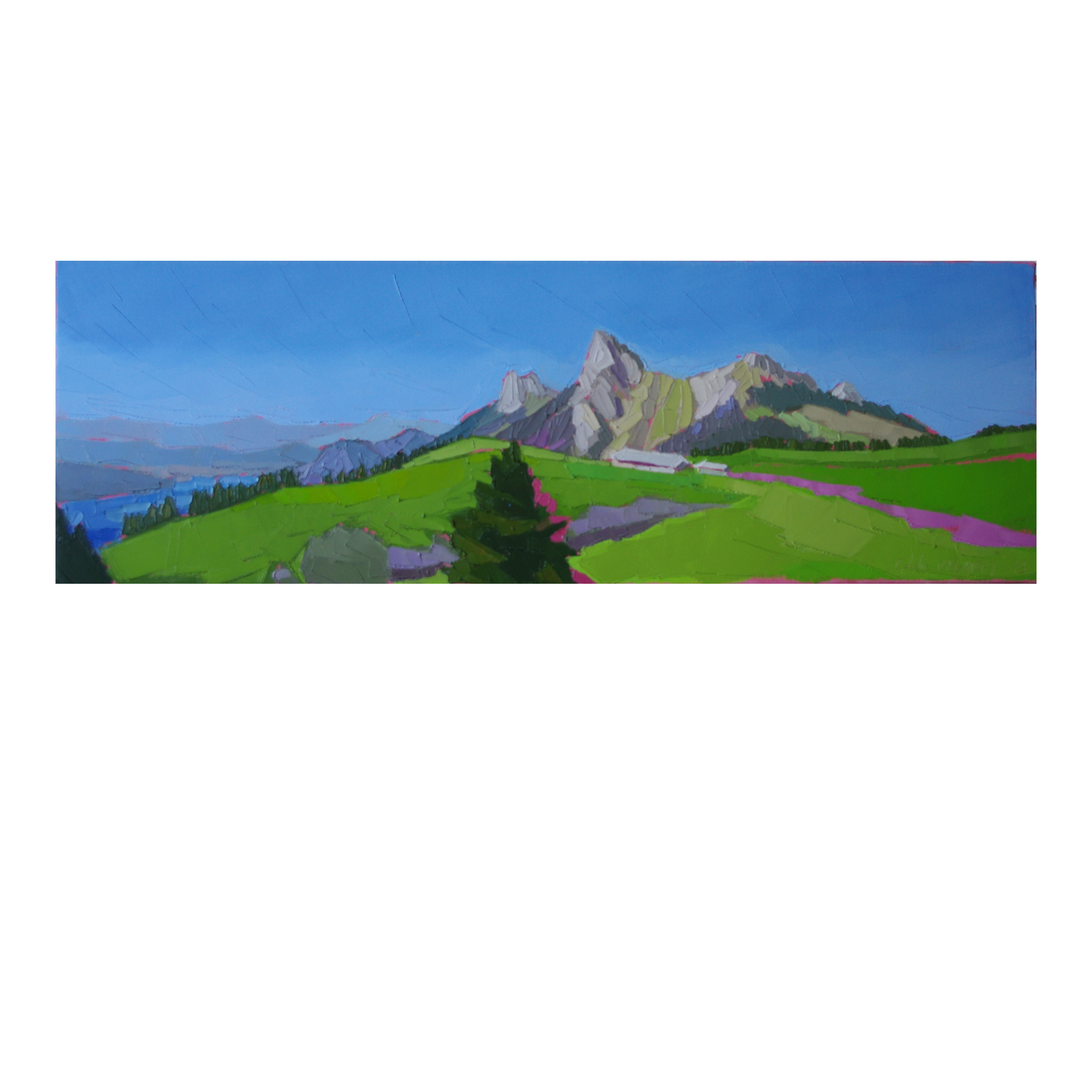 DU CHALET DE L'AULP 90×30